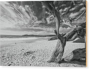 Dead Tree On The Beach Wood Print by George Oze