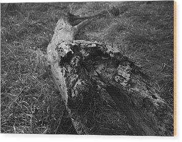 Dead Wood Wood Print by Bradley Nichol