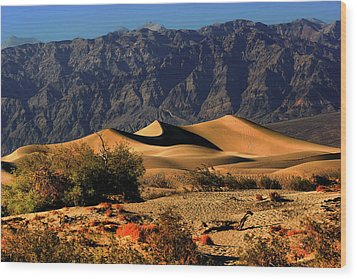 Death Valley's Mesquite Flat Sand Dunes Wood Print by Christine Till