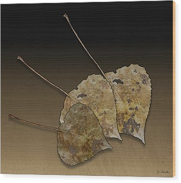 Wood Print featuring the photograph Decaying Leaves by Joe Bonita