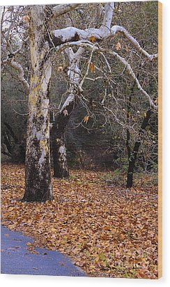 Wood Print featuring the photograph December In California by Viktor Savchenko