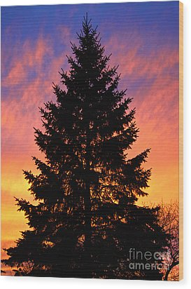 Wood Print featuring the photograph December Sunset by Mark Miller