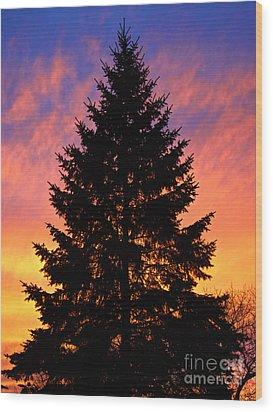 December Sunset Wood Print by Mark Miller