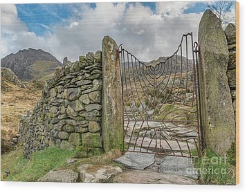 Wood Print featuring the photograph Decorative Gate Snowdonia by Adrian Evans
