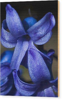 Deep Blue Flower Wood Print by Svetlana Sewell