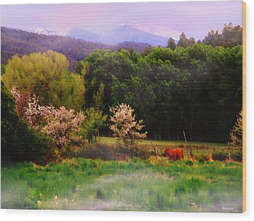 Wood Print featuring the photograph Deep Breath Of Spring El Valle New Mexico by Anastasia Savage Ealy