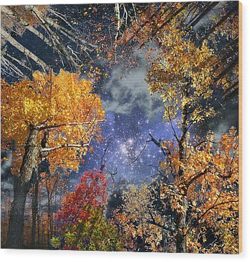Deep Canopy Wood Print by Dave Martsolf
