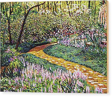 Deep Forest Garden Wood Print by David Lloyd Glover