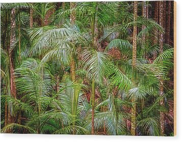 Wood Print featuring the photograph Deep In The Forest, Tamborine Mountain by Dave Catley