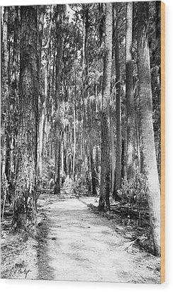 Deep In The Woods  Wood Print by Phill Doherty