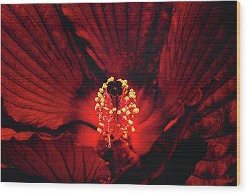 Deep Red Wood Print by Jae Mishra
