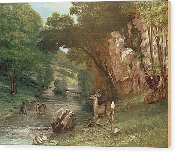 Deer By A River Wood Print by Gustave Courbet