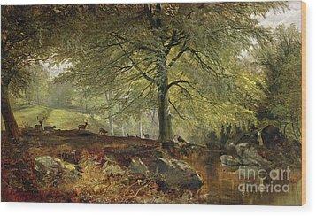 Deer In A Wood Wood Print by Joseph Adam
