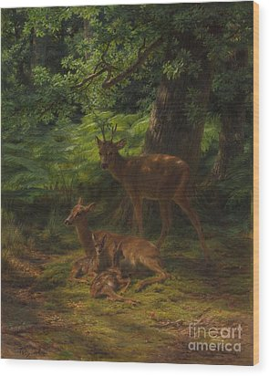 Deer In Repose Wood Print by Rosa Bonheur