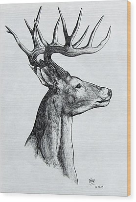 Wood Print featuring the drawing Deer by Michael  TMAD Finney