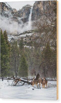 Deer Of Winter Wood Print