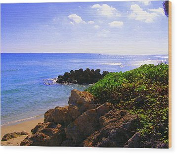 Wood Print featuring the photograph Deerfield Beach by Artists With Autism Inc