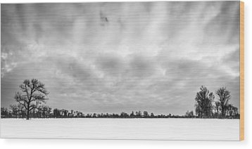 Wood Print featuring the photograph Delaware Park Winter  Meadow by Chris Bordeleau