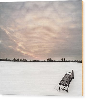 Wood Print featuring the photograph Delaware Park Winter Solace by Chris Bordeleau