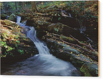 Delaware Water Gap 020 Wood Print by Scott McAllister