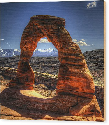 Delicate Arch Framing La Sal Mountains Wood Print