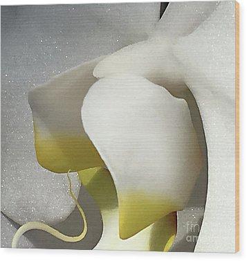 Delicate As Egg Yolk Wood Print by Sherry Hallemeier