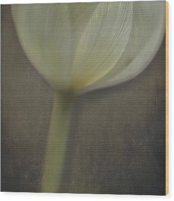 Delicate Goblet Wood Print by Kevin Bergen