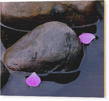 Wood Print featuring the photograph Delicate Petals With Rocks by Doris Potter