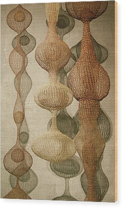 Wood Print featuring the photograph Delicate Shapes by Roger Mullenhour