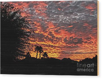 Wood Print featuring the photograph Delightful Evening by Robert Bales
