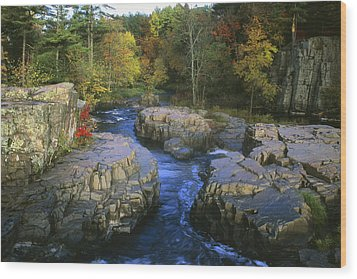 Dells Of The Eau Claire Wood Print by Peter Skiba
