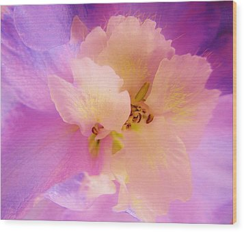 Delphinium Abstract Wood Print