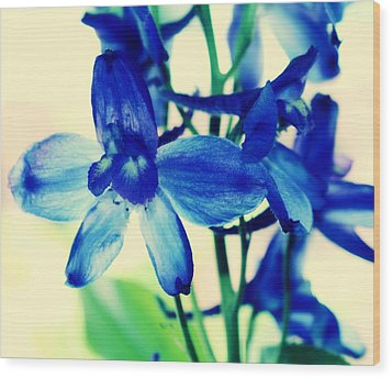Delphinium Wood Print by Cathie Tyler