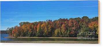 Delta Lake State Park Foliage Wood Print by Diane E Berry