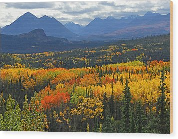 Denali National Park Greeting Wood Print