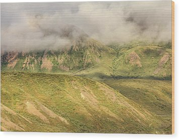 Denali National Park Mountain Under Clouds Wood Print