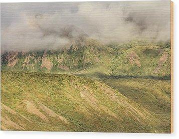 Denali National Park Mountain Under Clouds Wood Print
