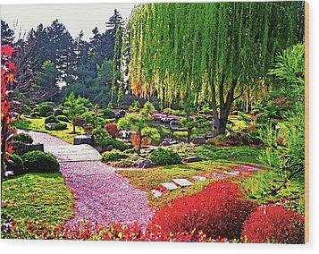 Denver Botanical Gardens 1 Wood Print by Steve Ohlsen