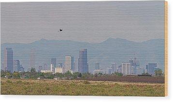 Denver Colorado Pretty Bird Fly By Wood Print by James BO Insogna