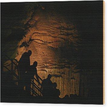 Descending Frozen Niagara Wood Print by Brian M Lumley