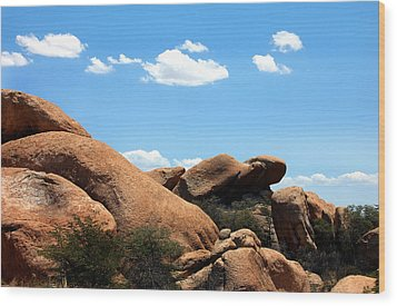 Desert Ancients Wood Print by Heather S Huston