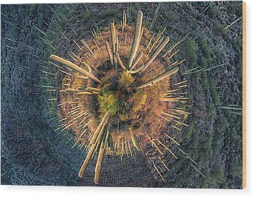 Wood Print featuring the photograph Desert Big Bang by Lynn Geoffroy