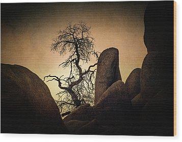 Desert Bonsai II Wood Print
