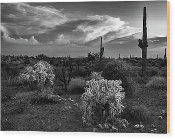 Wood Print featuring the photograph Desert Cactus Black And White by Dave Dilli