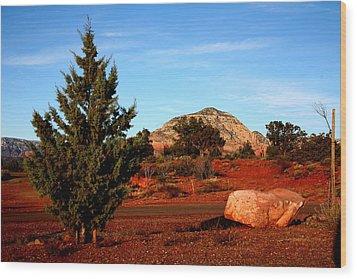 Desert Friends Wood Print by Jennilyn Benedicto
