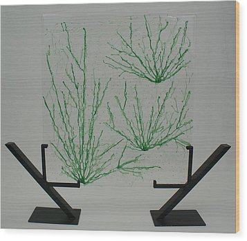 Desert Grass Wood Print by Louis Copper