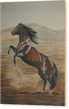 Wood Print featuring the drawing Desert Horse by Melita Safran