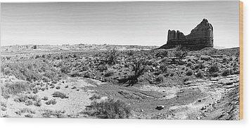 Desert Landscape - Arches National Park Moab, Utah Wood Print