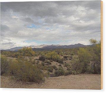 Wood Print featuring the photograph Desert Moods by Gordon Beck