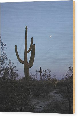 Wood Print featuring the photograph Desert Moon by Nancy Taylor